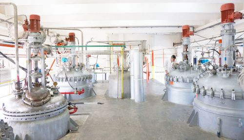 Production Facilities in Knezha